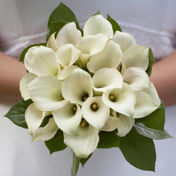 Precious-Calla-Lilies-Bridal-Bouquet